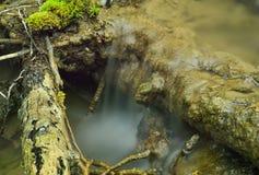 Ruisseau de ressort image libre de droits