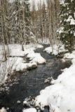 Ruisseau de Suédois de l'hiver Images libres de droits