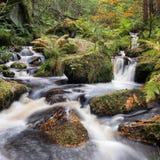 Ruisseau de Wyming, secteur maximal, R-U Images libres de droits