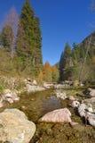 Ruisseau en montagnes Photo stock