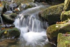 Ruisseau et sa cascade Photo stock