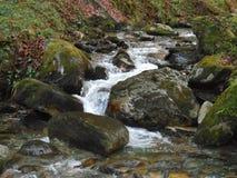Ruisseau photos libres de droits