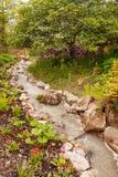 Ruisseau quittant l'étang Images libres de droits