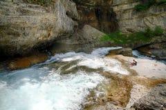 Ruisselet et forêt alpins de mountaine en parc national d'Ordesa Photo libre de droits