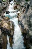 Ruisselet et forêt alpins de mountaine en parc national d'Ordesa Images stock