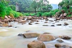 Ruisselet et humidité sur la zone de forêt tropicale, Thaïlande images libres de droits