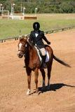 Ruiter die op paard de rechter groet royalty-vrije stock fotografie