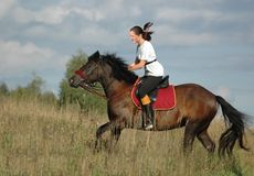 Ruiter en paard Stock Foto's