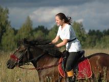 Ruiter en paard Royalty-vrije Stock Foto