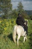 Ruiter en paardebloemen Stock Foto's