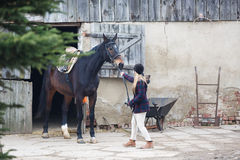 Ruiter met het paard stock foto