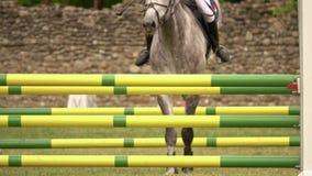 Ruiter met paard, die een hindernis springen stock videobeelden