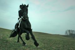 Ruiter op een paard Stock Afbeelding