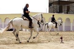 Ruiter presteert op 23 Maart, 2012, Bahrein Stock Afbeeldingen
