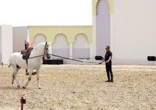 Ruiter presteert op 23 Maart, 2012 in Bahrein Stock Foto's