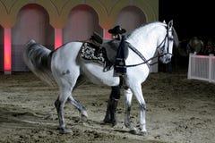Ruiter presteert op 26 Maart, 2012 in Bahrein Royalty-vrije Stock Afbeeldingen