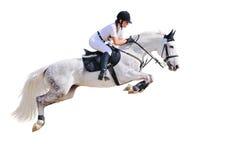 Ruiter sport: het jonge meisje in het springen toont Stock Foto