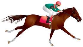 Ruiter sportpaard en ruiter binnen   royalty-vrije illustratie
