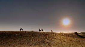 Ruiters op Arabische paardengalop over de woestijn bij zonsondergang Royalty-vrije Stock Fotografie