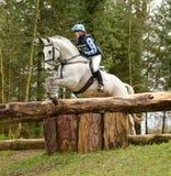 Ruitersport: paard het springen Royalty-vrije Stock Foto's