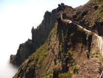 Ruivo de Pico en Madeira Fotos de archivo libres de regalías