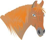 Ruivo do cavalo ilustração stock