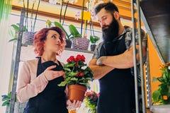 Ruivo fêmea e homem tattooed farpado que vende flores em um miliampère Imagem de Stock Royalty Free
