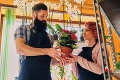 Ruivo fêmea e homem tattooed farpado que vende flores em um miliampère Imagem de Stock