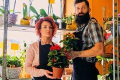 Ruivo fêmea e homem tattooed farpado que vende flores em um miliampère Fotos de Stock