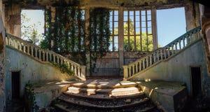 Rujnujący dworu wnętrze przerastający roślinami Przerastać bluszczy okno i starym schody obraz royalty free