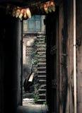 Rujnujący schody dziedzictwo budynek fotografia stock