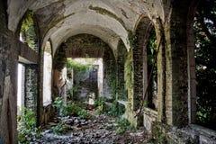 Rujnuję porzucał porosłego wnętrze zaniechany dwór, Abkhazia, Gruzja zdjęcia stock