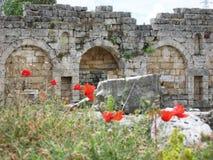 Rujnujący antyczni bramy i czerwieni kwiaty Obrazy Stock