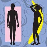 Ruler Banana Body Type. Vector Illustration of female body shape banana also known as ruler. Shape with few curves vector illustration