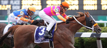 Ruler on Ice Wins The 2011 Belmont Stakes Royalty Free Stock Image