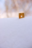 Ruler in Snow 12 Inches Upper Right Royalty Free Stock Images