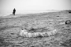 Rulla in sanden medan ett manpasserande Royaltyfri Bild