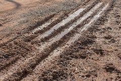Rulla spåret på den leriga vägen med solen reflection08 Fotografering för Bildbyråer