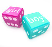 Rulla tärningen - leverera pojken, eller flickan behandla som ett barn i havandeskap Fotografering för Bildbyråer