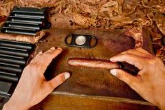 rullade den kubanska handen för cigarrer Arkivfoto