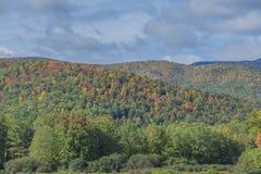 Rullande Autumn Landscape Royaltyfria Foton