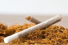 Rullande cigaretter Royaltyfri Fotografi