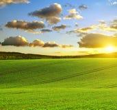 Rullande fält på solnedgången i Tjeckien Arkivbilder