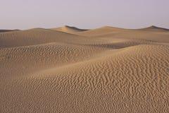 Rullande sanddyn i öknen Arkivbild