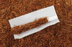 Rullande tobak Fotografering för Bildbyråer
