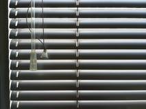 Rullgardiner på fönstret Arkivfoton