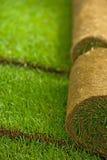 Rulli dell'erba del tappeto erboso Fotografia Stock Libera da Diritti
