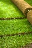 Rulli dell'erba del tappeto erboso parzialmente svolti Fotografia Stock