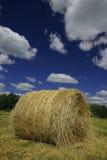 Rullo del fieno (balla) Fotografia Stock