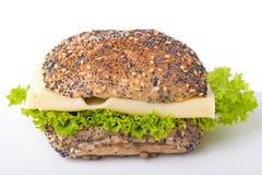 Rullo di pane con formaggio ed insalata fotografia stock libera da diritti